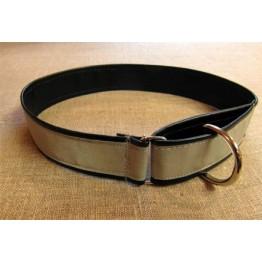Reflexhalsband till mellanstor hund
